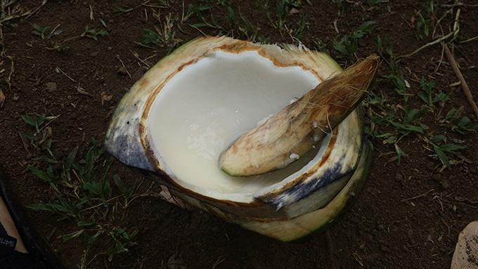 ココナツBukoの食べ方